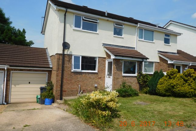 Thumbnail Semi-detached house to rent in Haydons Park, Honiton