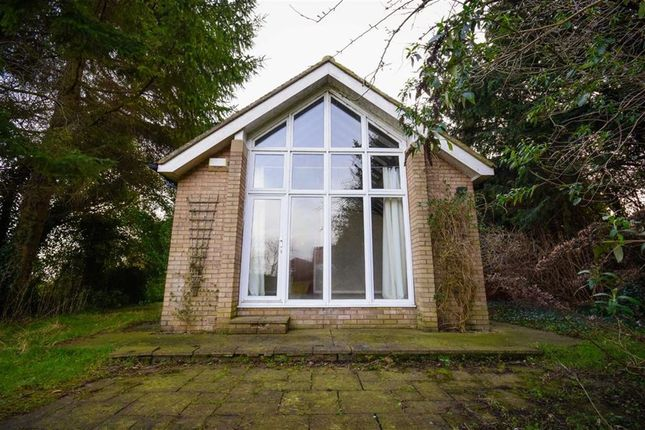 Thumbnail Bungalow to rent in Jenny Brough Lane, Hessle