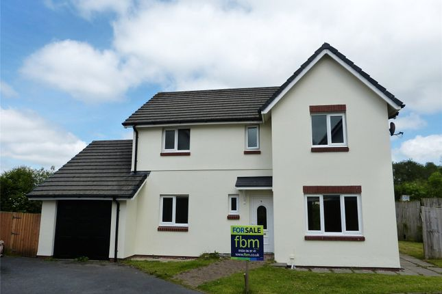 Thumbnail Detached house for sale in Panteg Uchaf, Narberth, Pembrokeshire