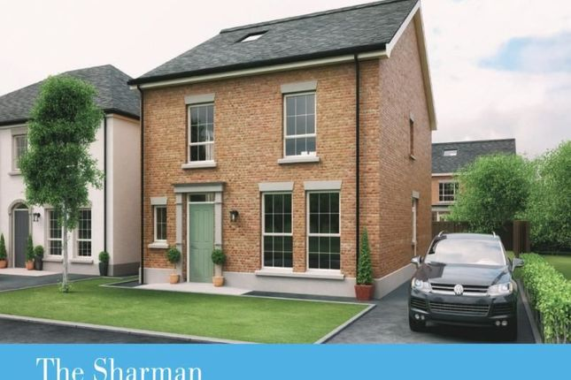 Thumbnail Detached house for sale in Dillon/Harlow Green, Meeting Street, Moira