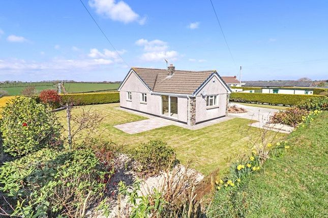 Thumbnail 3 bed bungalow to rent in Hollacombe, Holsworthy