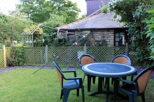 Garden of Norfolk Road, Sheffield S2
