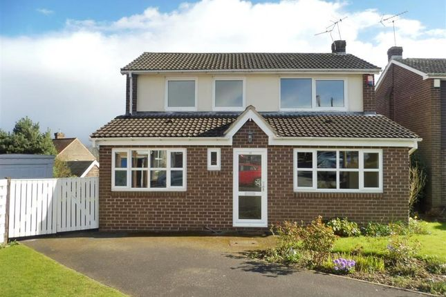 Thumbnail Property to rent in Chestnut Grove, Sprotbrough, Doncaster