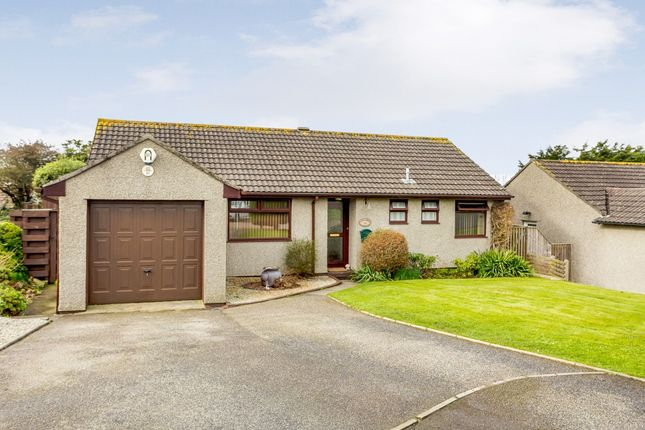 Thumbnail Detached bungalow for sale in Meadow Drive, Camborne, Cornwall