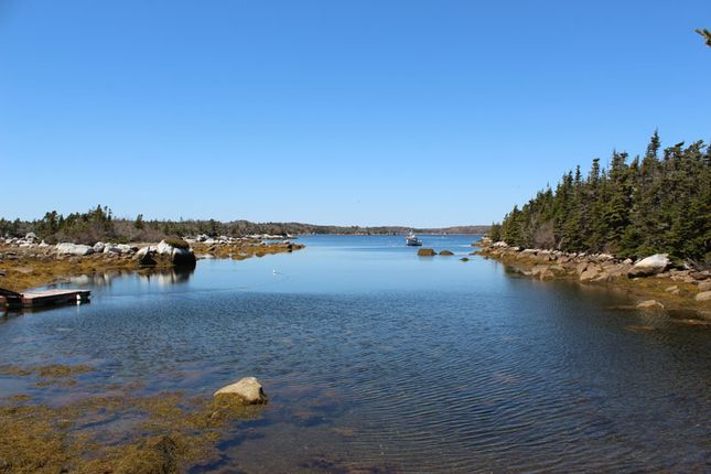 <Alttext/> of Terence Bay, Nova Scotia, Canada