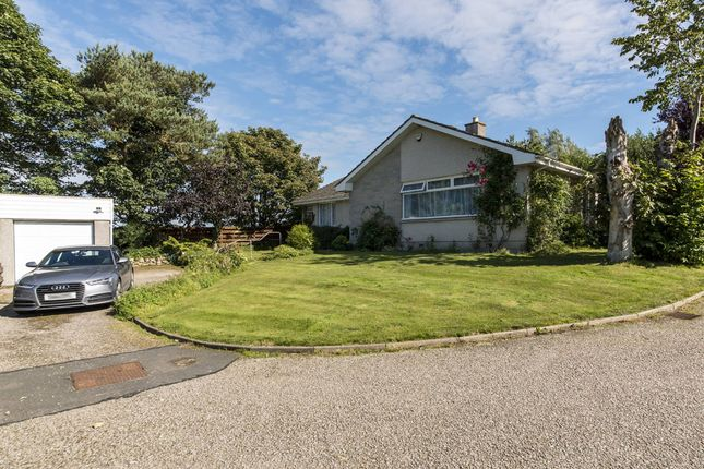 Thumbnail Bungalow for sale in Rowan Grove, Ellon