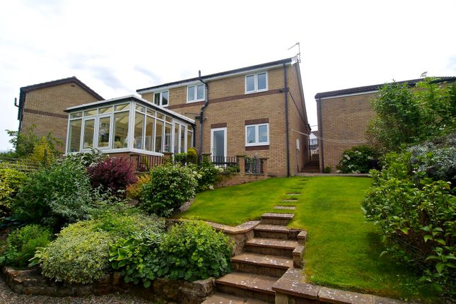 Thumbnail Detached house for sale in Ash Close, Hexham