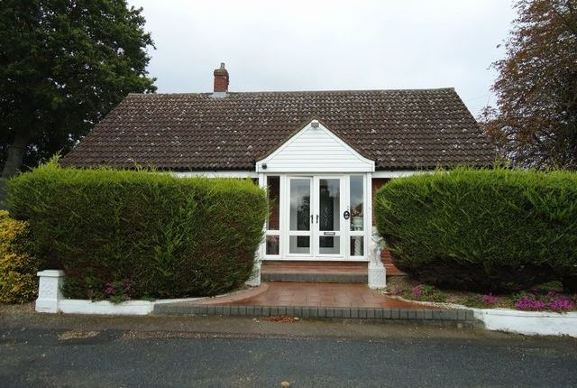 Thumbnail Bungalow to rent in Braiswick, Colchester, Essex