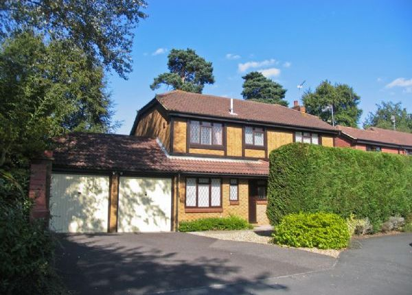 Thumbnail Detached house to rent in Badgers Copse, Camberley