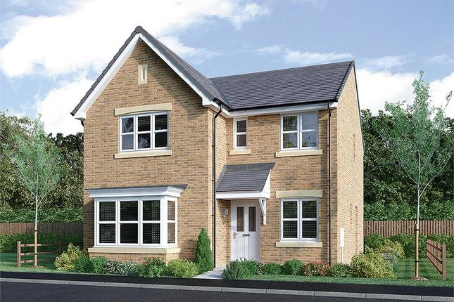 "Thumbnail Detached house for sale in ""Strachan"" at Rosehall Way, Uddingston, Glasgow"