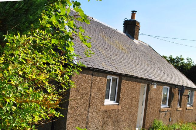 Thumbnail Cottage to rent in Brechin