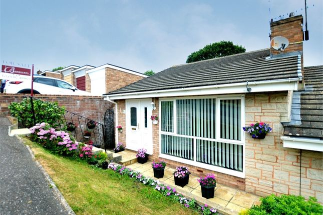 Thumbnail Semi-detached bungalow for sale in Knowle Drive, Exwick, Exeter, Devon