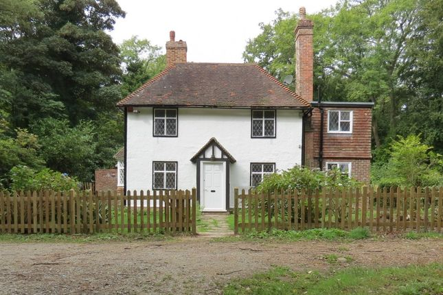 Thumbnail Detached house to rent in Shovers Green, Wadhurst, East Sussex