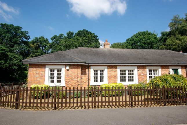 Thumbnail Semi-detached bungalow for sale in Winchfield Court, Pale Lane, Winchfield