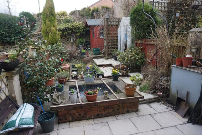 Garden of Kay Street, Stalybridge SK15