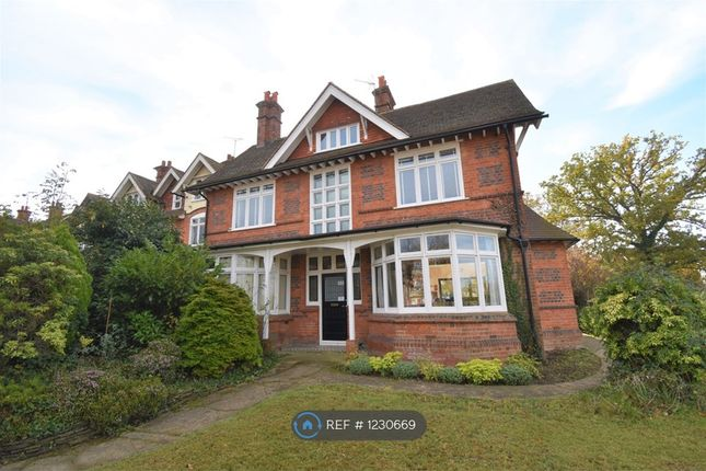Thumbnail Semi-detached house to rent in Wokingham Road, Reading