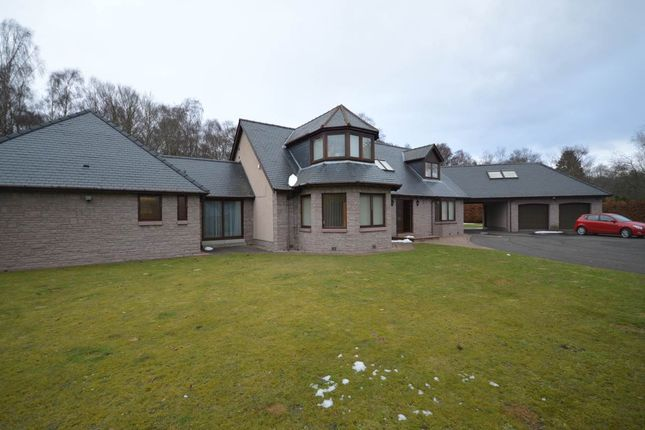 Thumbnail Detached house to rent in Oathlaw, Forfar