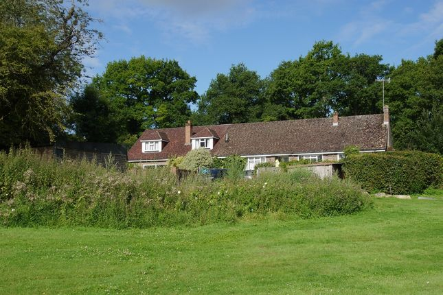 Thumbnail Detached house for sale in Roughway, Tonbridge