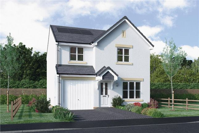 "Thumbnail Detached house for sale in ""Erskine"" at Mcdonald Street, Dunfermline"