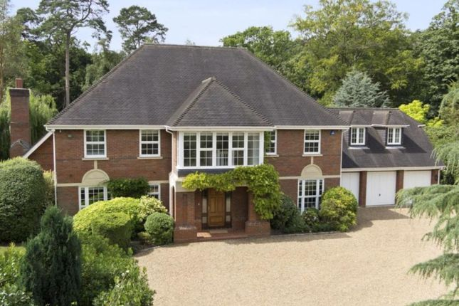 Thumbnail Detached house to rent in Birds Hill Road, Oxshott