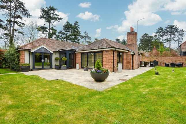 Thumbnail Bungalow for sale in Dane O Coys Road, Bishop's Stortford