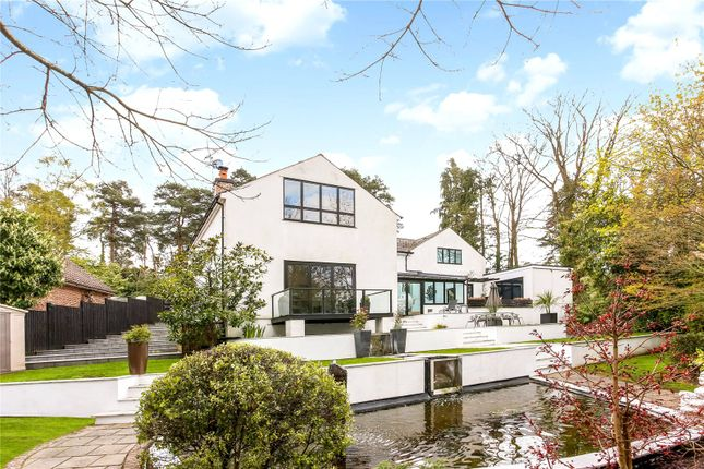 Thumbnail Detached house for sale in Woodbridge Drive, Camberley, Surrey