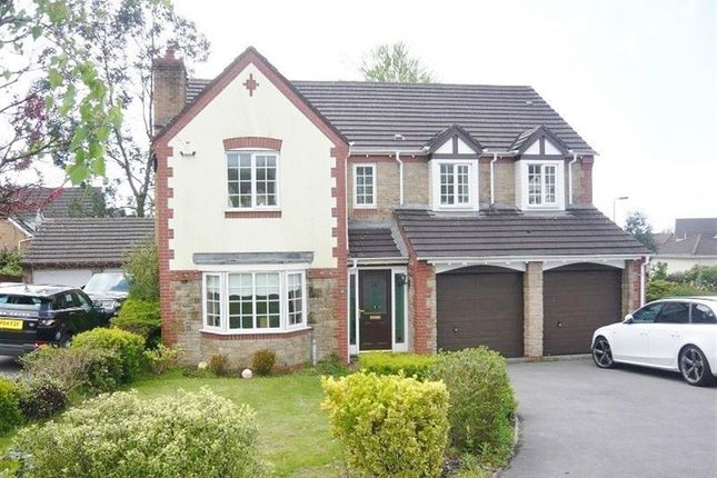 Thumbnail Property to rent in Carreg Erw, Margam Village