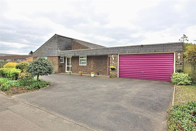 Thumbnail Bungalow for sale in Cotton End Road, Wilstead, Bedford