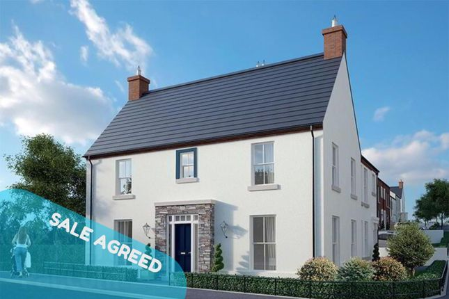 Thumbnail Semi-detached house for sale in The Carnation, The Hillocks, Londonderry