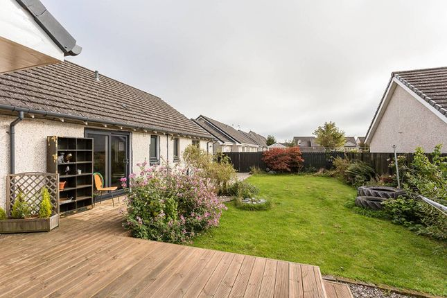 Thumbnail Bungalow for sale in Hatchbank Road, Gairney Bank, Kinross