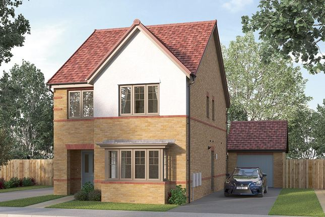"Thumbnail Detached house for sale in ""The Finsbury"" at Ward Road, Clipstone Village, Mansfield"