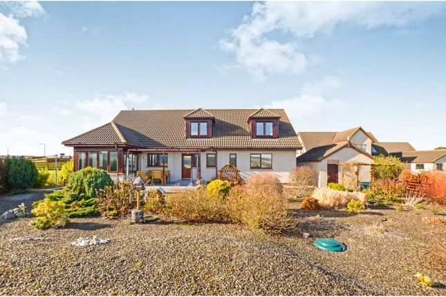 6 bedroom detached bungalow for sale in Aird Place, Balblair