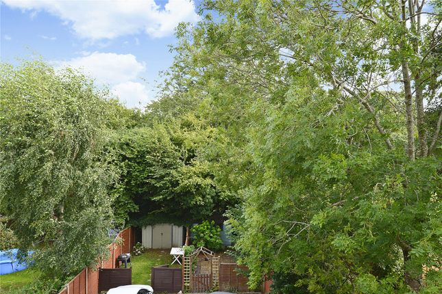 Picture No. 05 of 6 Yew Tree Road, Witley, Surrey GU8