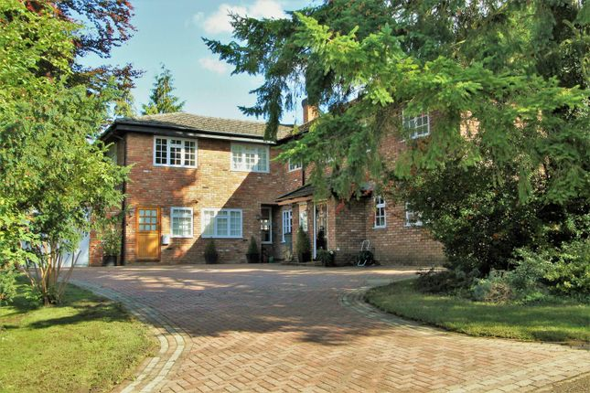 Thumbnail Detached house for sale in The Chestnuts, Beechwood Park, Hemel Hempstead