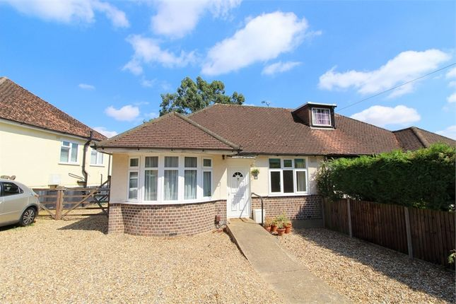Thumbnail Semi-detached bungalow to rent in Green Lane, St Albans, Hertfordshire