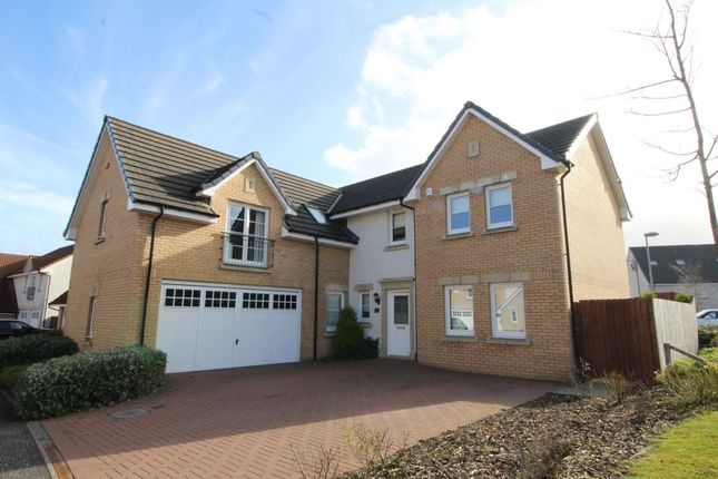 Thumbnail Detached house to rent in Fitzroy Grove, East Kilbride, Glasgow