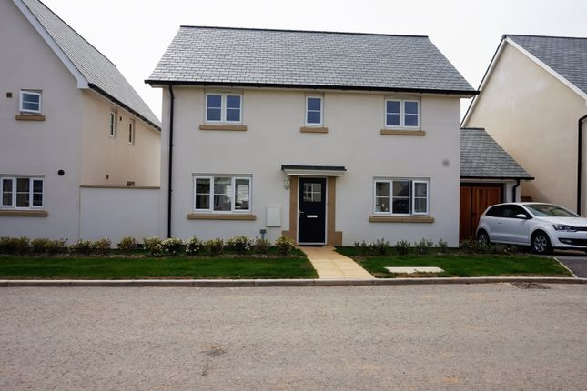 Thumbnail Detached house for sale in Omaha Way, Barnstaple