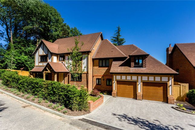 Thumbnail Detached house for sale in Plot 1, Butterfly Walk, Surrey