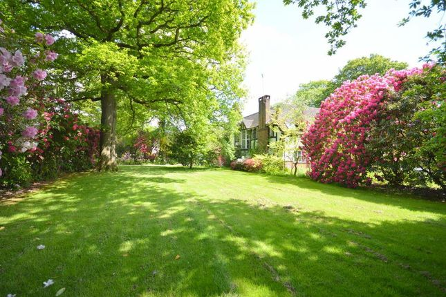 Thumbnail Land for sale in Beech Drive, Kingswood, Tadworth