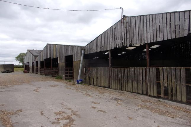 Thumbnail Land for sale in Clydey, Llanfyrnach