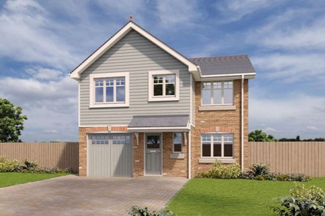 Thumbnail Detached house to rent in 119 Royal Park, Ramsey