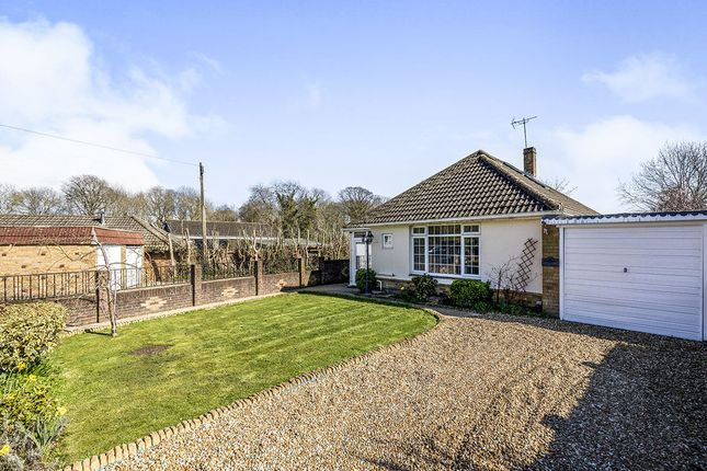Thumbnail Bungalow for sale in Willowdene Close, Bedhampton, Havant