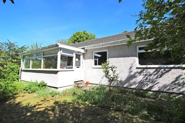 Thumbnail Detached bungalow for sale in Lairg Muir, Lairg