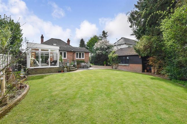 Thumbnail Bungalow for sale in Andlers Ash Road, Liss, Hampshire