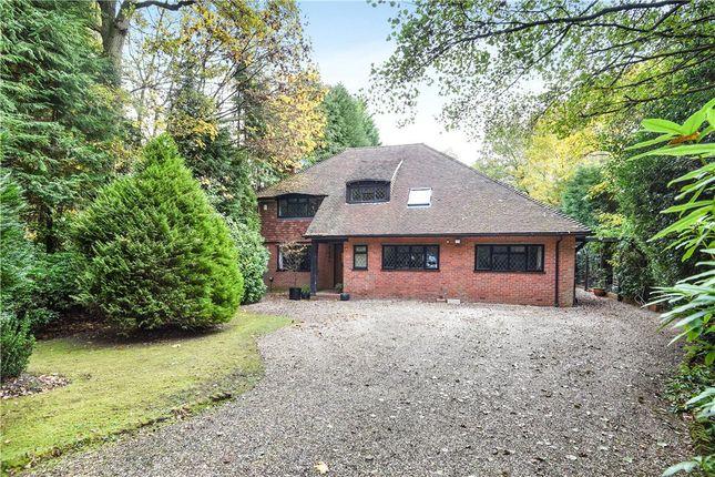 Thumbnail Detached house for sale in Heath Ride, Finchampstead, Wokingham