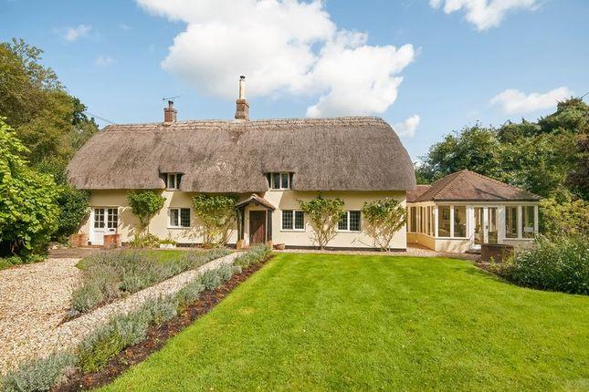 Thumbnail Detached house for sale in Bramshaw, Lyndhurst