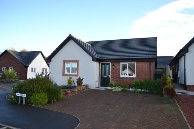 Thumbnail Bungalow to rent in 1 Oak Avenue, The Oaks, Longtown, Carlisle