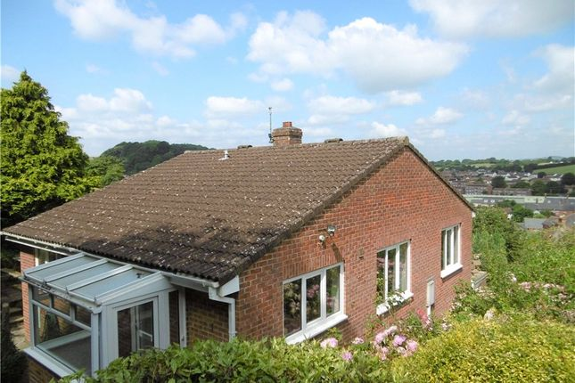 Thumbnail Detached bungalow to rent in Osbourne Road, Bridport