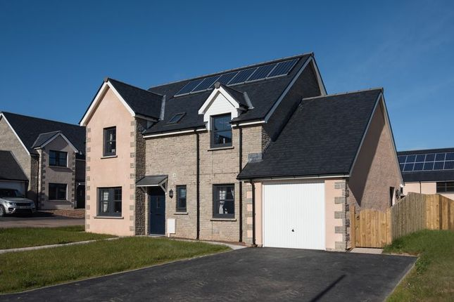 Thumbnail Detached house for sale in Plot 29, Peelwalls Meadows, Eyemouth