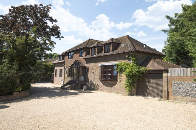 Thumbnail Detached house for sale in Mill Lane, Langstone